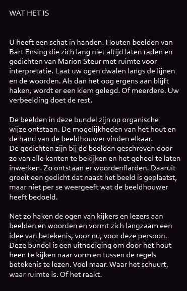 Gedichten Marion Steur